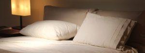 punaises de lit en vacances