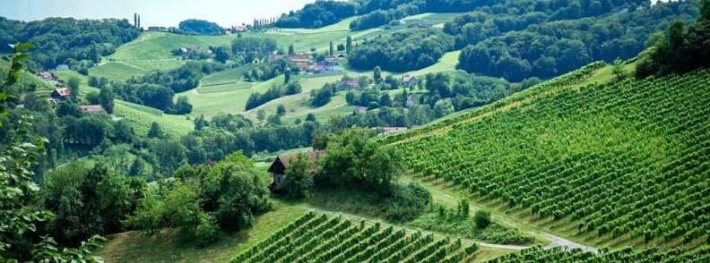 austria wine region styria