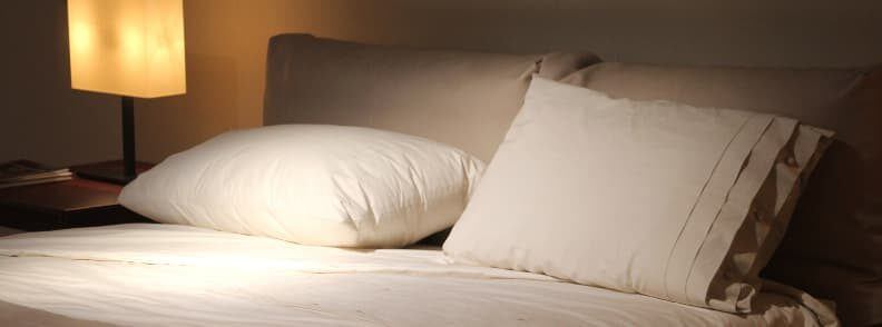 bed bugs travel tips