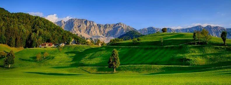 carinthia province meadow