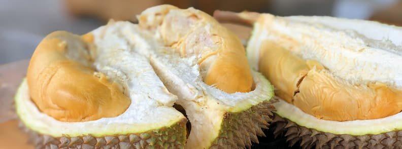 durian restaurants in chiang mai thailand