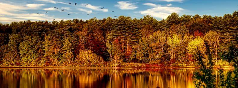 fall foliage in massachusetts mohawk trail
