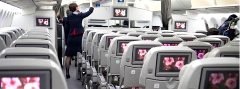 flight attendants in plane