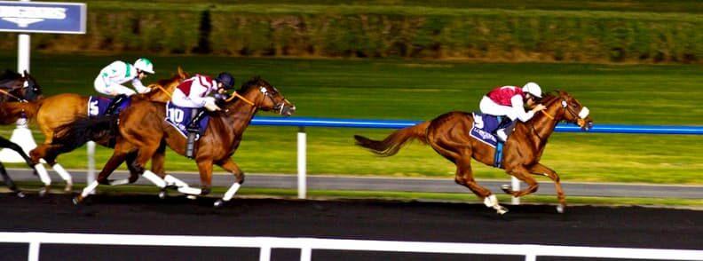 horse racing dubai budget travel