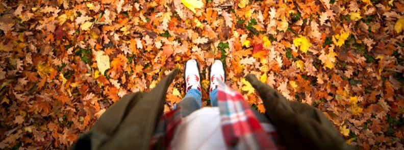 new hampshire fall foliage hike