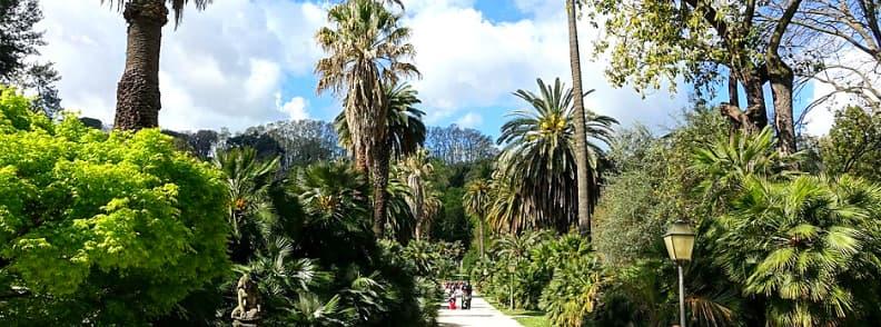 orto botanico roma rome botanic garden