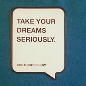 ostrichpillow motto