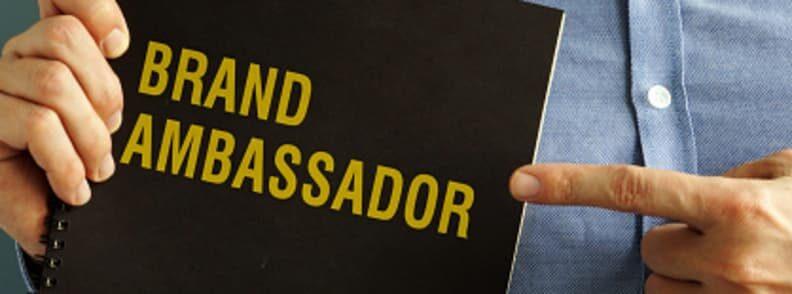 travel wise as a brand ambassador