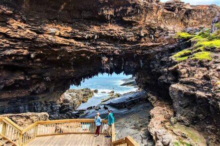 Full-Day Adelaide Kangaroo Island tour